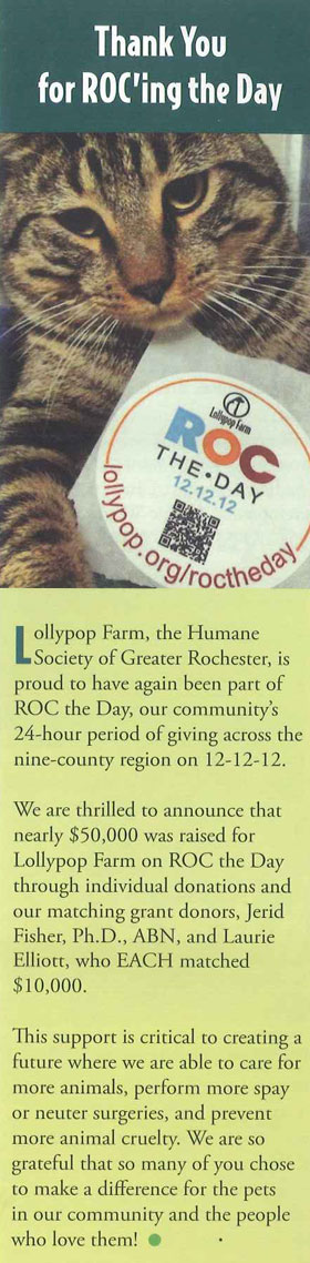 Jerid Fisher - Matching Donation for ROC the Day 2012 for Lollypop farms.